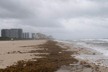 Gobernador de Florida ordena aislamiento obligatorio durante 30 días