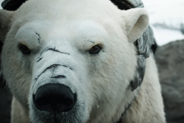HBO presentó el tráiler oficial de la temporada 2 de His Dark Materials
