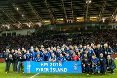 Iceland's players and (20333478)