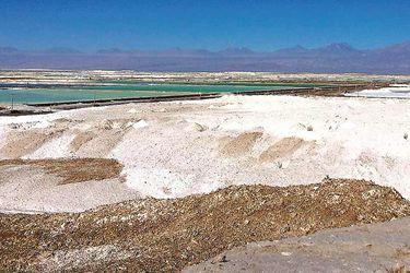 Salar-Atacama-5
