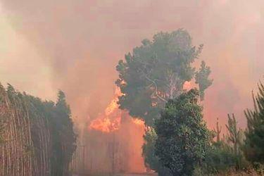 IncendioCarahueWEb