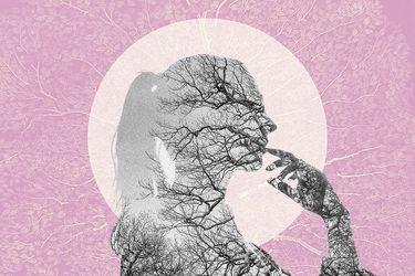 Psicogenealogía: Descubrir la historia familiar para sanar traumas