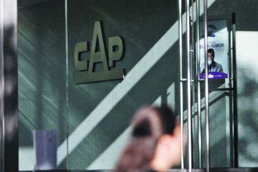 CAP mira opciones de compra en Norteamérica y desecha compartir su puerto con Dominga