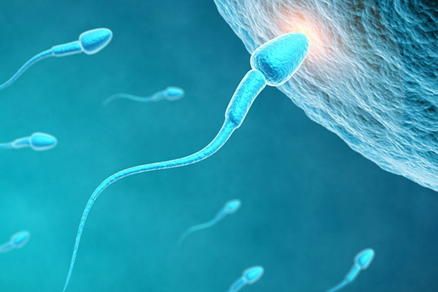 fertilidad_esperma