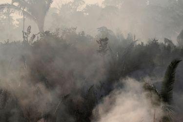 Incendios en la selva amazónica