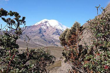 Cuatro muertos deja avalancha en el volcán Chimborazo de Ecuador