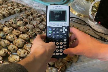 Un youtuber instaló Doom en una calculadora del 2004 potenciada por un montón de papas cocidas