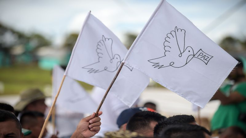 FARC rebels wave peace flags during the final act of abandonment of a