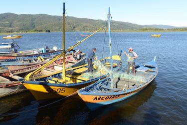 Gobierno enviará al Congreso nuevo proyecto para que pescadores puedan traspasar remanentes de cuotas al año siguiente