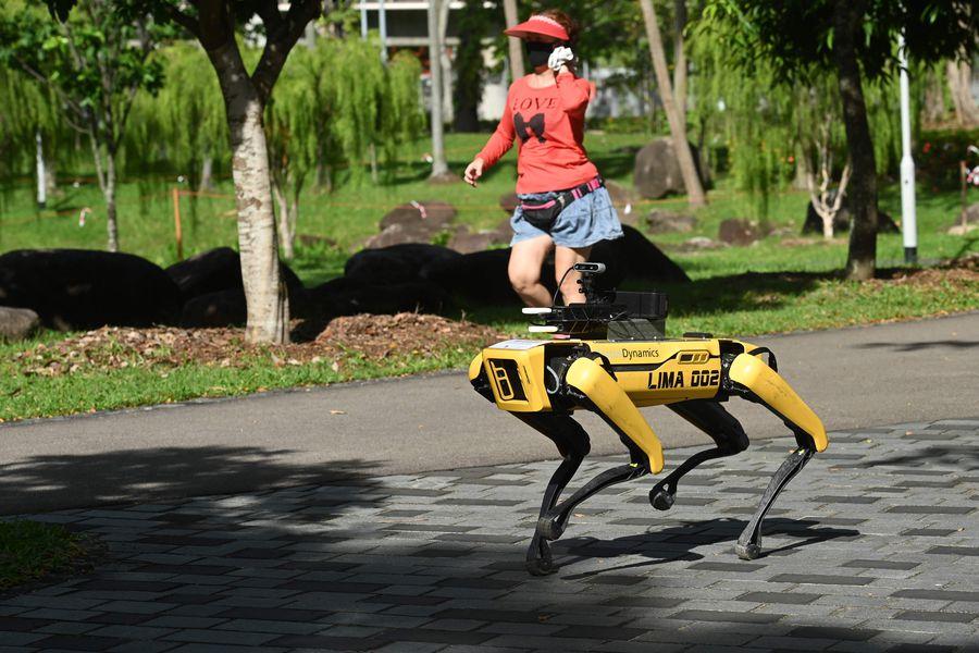 El perro robot que busca evitar la propagación del Covid-19 en ...
