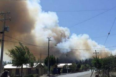 Declaran alerta roja para Tucapel por incendio forestal