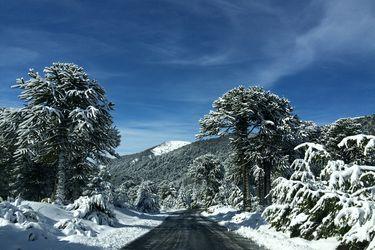 Nieve: de vuelta a las pistas
