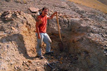 Entre cobras, escorpiones venenosos, temperaturas sobre 40°C y guerras: científico chileno realiza importante hallazgo paleontológico en el remoto Kirguistán