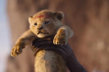 Disney decidió que el remake digital de El Rey León tenga secuela a cargo del director de Moonlight