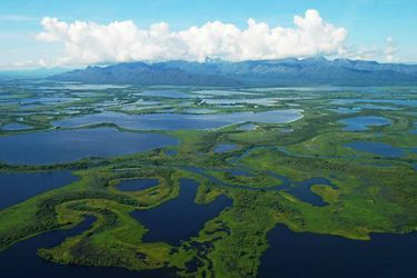 Estudio demuestra que proteger el 30% de la tierra y el océano generaría beneficios en la economía