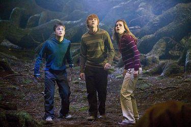 """Rupert Grint cree que """"sería extraño"""" que la serie de Harry Potter fuera una continuación de las películas"""