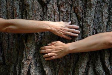 Natura es reconocida a nivel mundial por involucrar a los proveedores con el cuidado del cambio climático