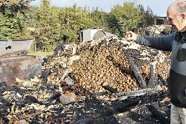Agricultor de Cañete denuncia haber sido víctima de más de 100 ataques