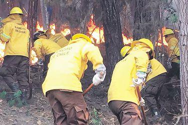Incendios Carahue