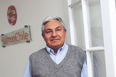 """Arturo Clement, de Salmonchile: """"Este año, el mayor impacto va a ser los bajos precios a los que estamos vendiendo"""""""