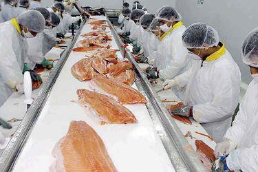 Industria acuícola