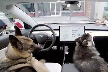 000-Tesla