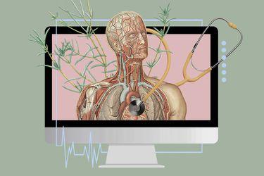Lecciones en telemedicina, la herramienta que se está masificando