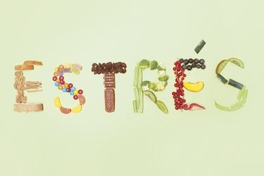 Las implicancias del estrés en la salud intestinal