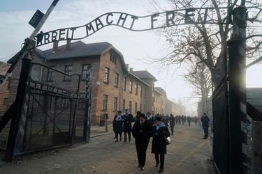 Testimonios e historias: los libros a 75 años de la liberación de Auschwitz