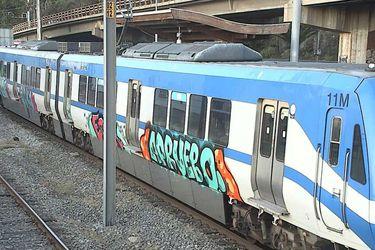 Un ciudadano irlandés entre los formalizados por rayar Metro de Valparaíso