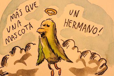Esto no para: Ahora Liniers hizo un ilustración en honor a Chimuelo
