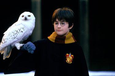 Volver a 2001 con el joven mago: Harry Potter y la Piedra Filosofal regresa a los cines chilenos