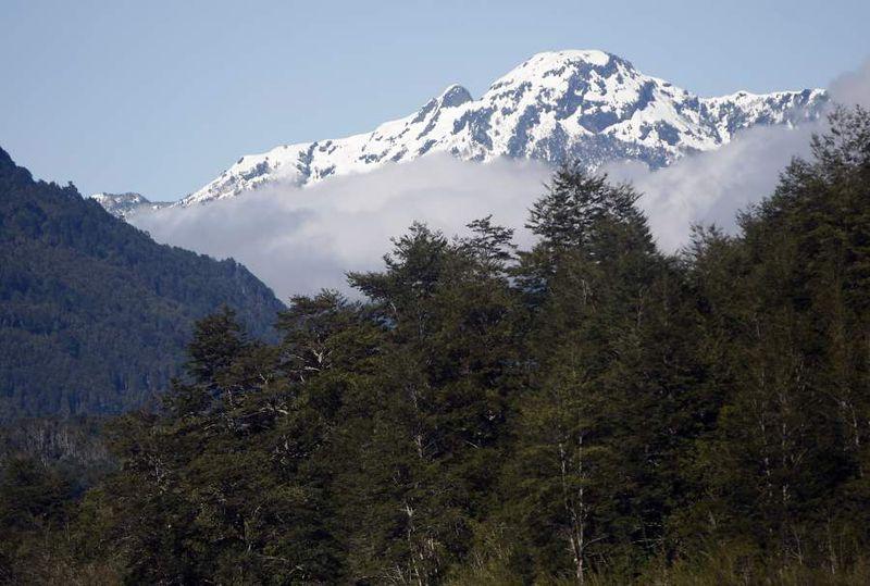 Santiago 28 Septiembre 2007. Bosque Nativo de la X Region