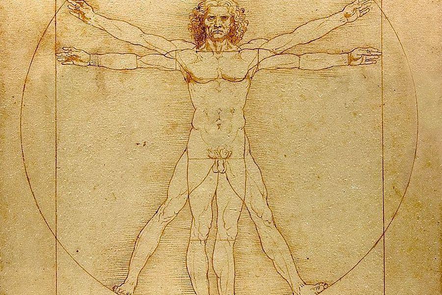 Hombre de Vitruvio (1490)