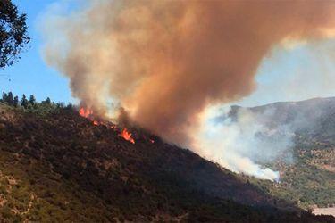 incendio forestal en machalí