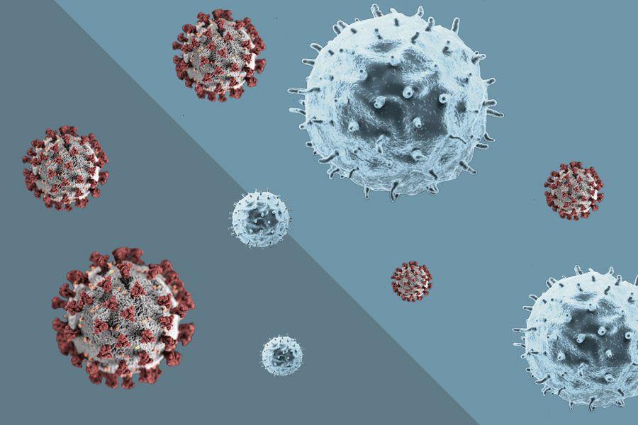 cancer y coronavirus