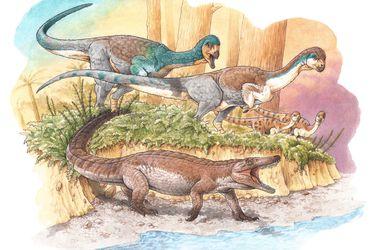 Revelan la existencia de un cocodrilo terrestre prehistórico que vivió junto al Lago General Carrera y fue contemporáneo al Chilesaurio