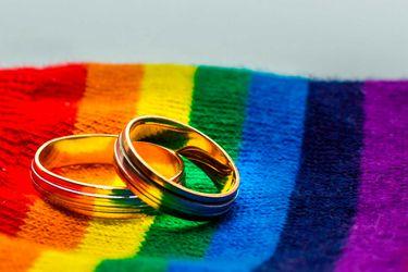 Comisión de Constitución aprueba en particular proyecto de matrimonio igualitario