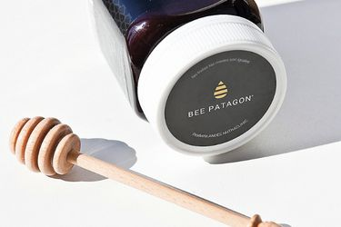 bee patagon