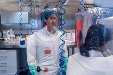 """La dura advertencia de la """"mujer murciélago"""", la viróloga de Wuhan: """"El coronavirus es sólo la punta del iceberg"""""""