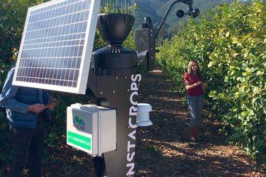 El asistente virtual para agricultores creado en Chile que se adjudicó un importante fondo en Sillicon Valley