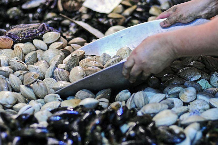 Cientos de personas comprando mariscos y pescado en el Mercado Central