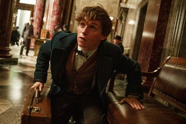 fantastic_beasts_and_where_to_find_them_still