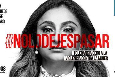 Presidencia, Andrónico Luksic y Carabineros: Las figuras que se han unido a la campaña tolerancia cero a la violencia contra la mujer