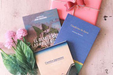 Sed de libros: editorial Montacerdos ofrece su catálogo en una botillería