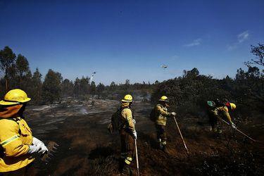 Onemi anuncia alerta roja en la comuna de Talca por incendio cercano a viviendas
