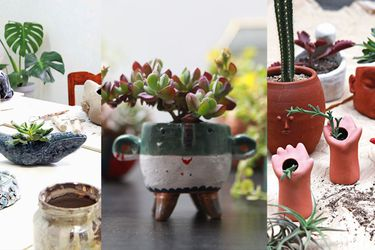 Plantas y maceteros: It's a match!
