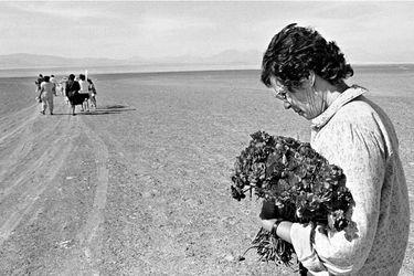 La Constelación de los Caídos, un memorial de luz en el desierto