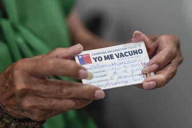 El debate que abrió Mañalich e incomodó a La Moneda: ¿Lograremos la inmunidad de rebaño en junio?