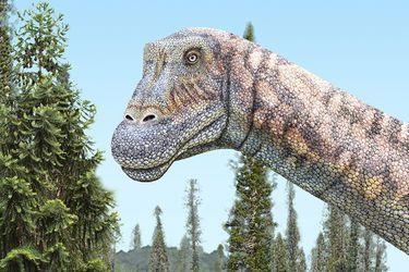 El colosal titanosaurio que acechó el norte de Chile